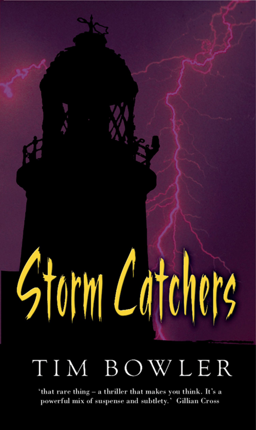storm catchers The storm catcher is a lightweight, geo-synthetic fabric used to protect buildings from hurricane force winds and flying debris.